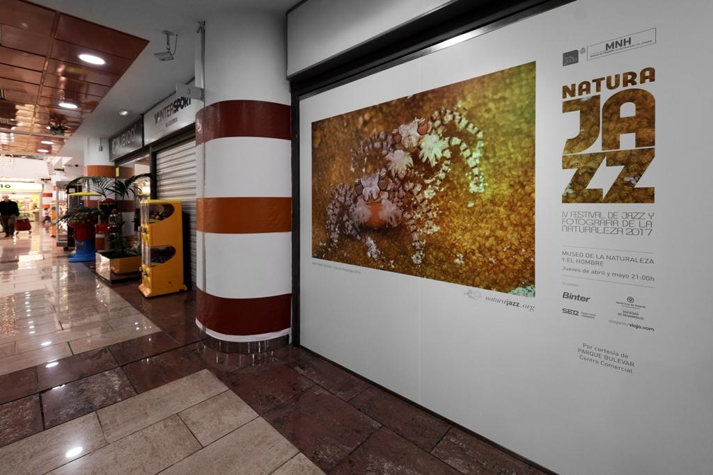 Exposición 2016