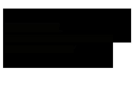 VIII festival